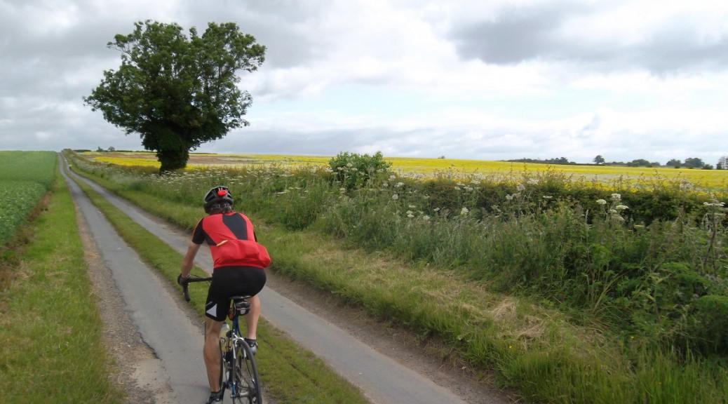 A Yorkshire Wolds Cyclist Bracken track